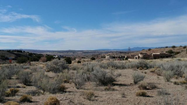 Petroglyph Tr Lot 1, Placitas, NM 87043 (MLS #939069) :: The Bigelow Team / Realty One of New Mexico