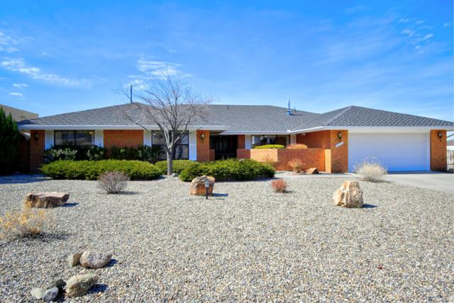 1705 Conestoga Drive SE, Albuquerque, NM 87123 (MLS #939133) :: The Bigelow Team / Realty One of New Mexico