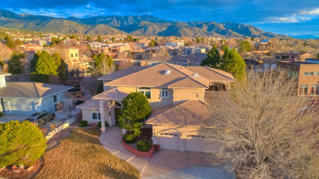 12212 Camelot Place NE, Albuquerque, NM 87122 (MLS #939155) :: The Bigelow Team / Realty One of New Mexico
