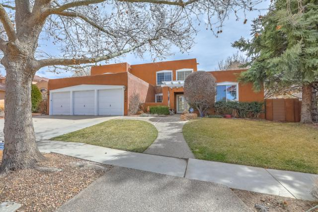 11904 Persimmon Drive NE, Albuquerque, NM 87111 (MLS #939161) :: The Bigelow Team / Realty One of New Mexico