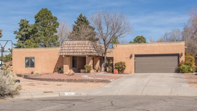 1315 Wagon Train Court SE, Albuquerque, NM 87123 (MLS #939179) :: The Bigelow Team / Realty One of New Mexico