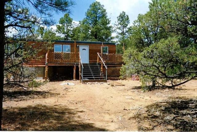 15 Dan Gatlin Road, Pie Town, NM 87827 (MLS #939271) :: Silesha & Company