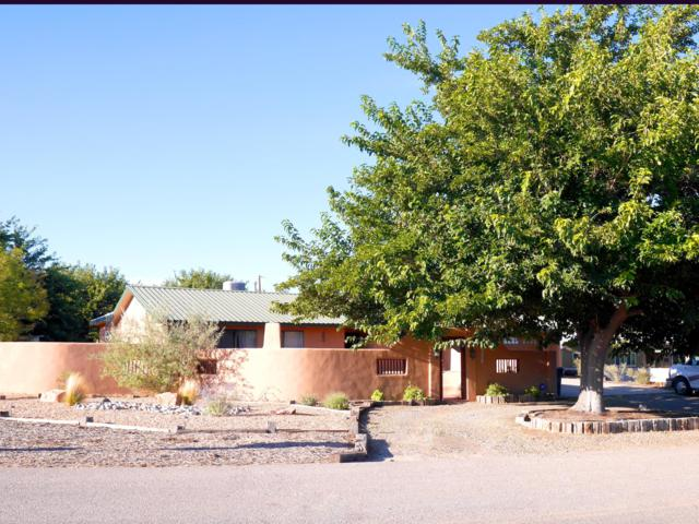 10701 Calle De Celina, Corrales, NM 87048 (MLS #939295) :: Silesha & Company