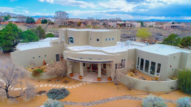 11000 Palomas Avenue, Albuquerque, NM 87122 (MLS #939509) :: The Bigelow Team / Realty One of New Mexico