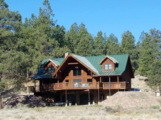 51 Haas Road, Quemado, NM 87829 (MLS #939518) :: The Bigelow Team / Realty One of New Mexico