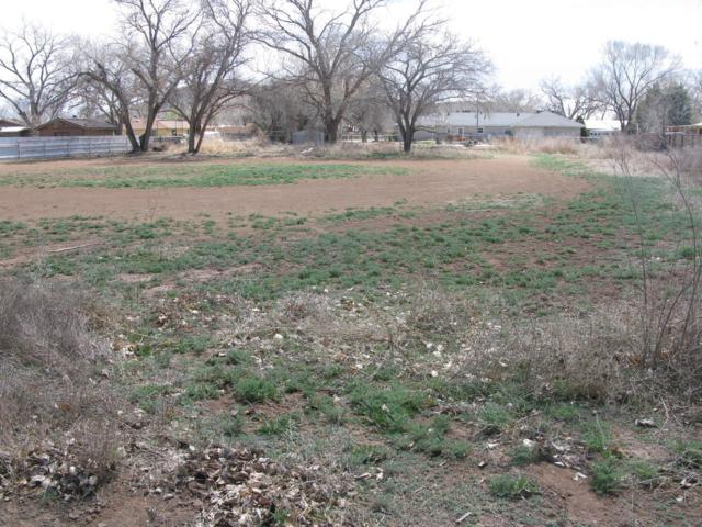 Shady Lane, Los Lunas, NM 87031 (MLS #939526) :: Campbell & Campbell Real Estate Services