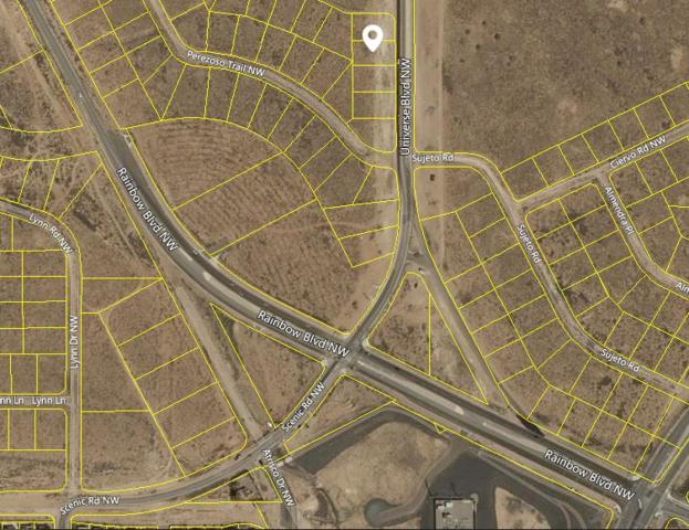 Universe Boulevard NW, Albuquerque, NM 87120 (MLS #939575) :: The Bigelow Team / Realty One of New Mexico