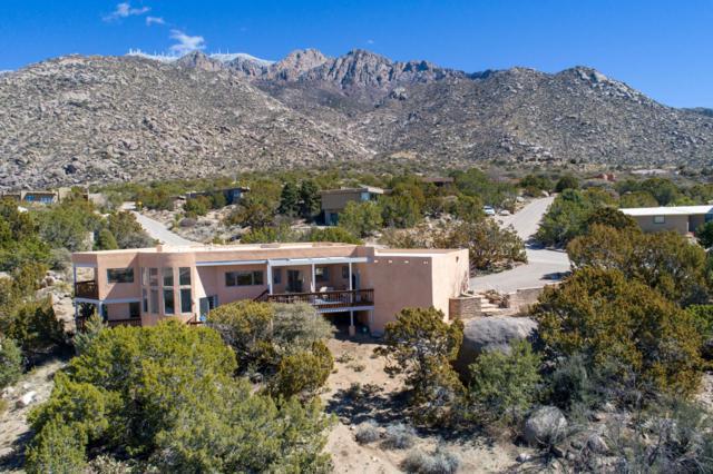 17 Juniper Hill Loop NE, Albuquerque, NM 87122 (MLS #939589) :: Silesha & Company