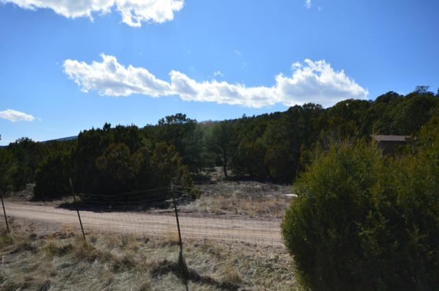 19 Puesta Del Sol, Cedar Crest, NM 87008 (MLS #939602) :: Campbell & Campbell Real Estate Services