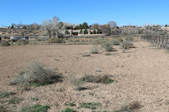 Paseo C De Baca, Corrales, NM 87048 (MLS #939632) :: The Bigelow Team / Realty One of New Mexico