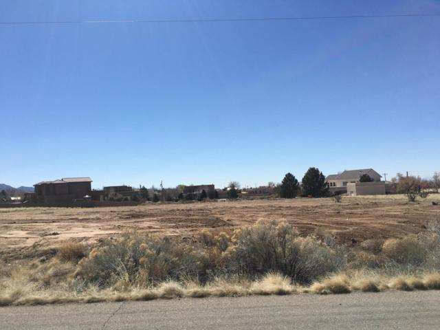 10420 Oakland Avenue NE, Albuquerque, NM 87122 (MLS #939702) :: The Bigelow Team / Realty One of New Mexico