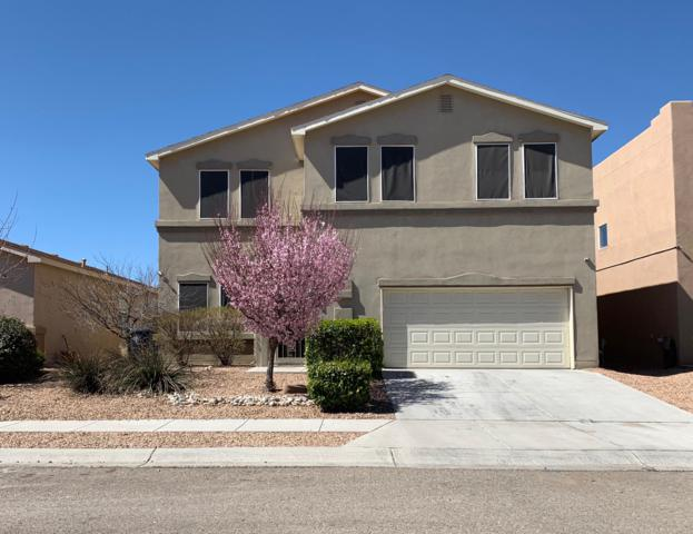 3127 Cricket Place SW, Albuquerque, NM 87121 (MLS #939773) :: The Bigelow Team / Realty One of New Mexico