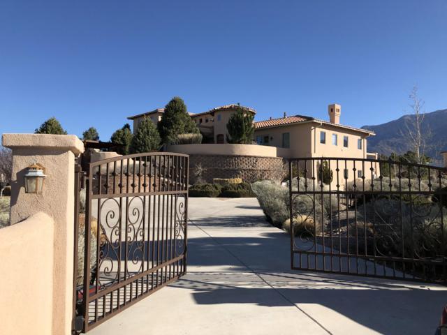 11009 San Francisco Avenue NE, Albuquerque, NM 87122 (MLS #939786) :: The Bigelow Team / Realty One of New Mexico