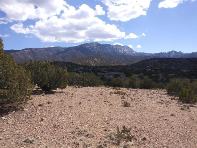 Pinon Lane, Placitas, NM 87043 (MLS #939813) :: Campbell & Campbell Real Estate Services