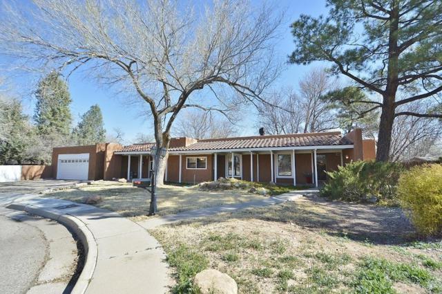 9 Garden Park Circle NW, Albuquerque, NM 87107 (MLS #939935) :: Silesha & Company