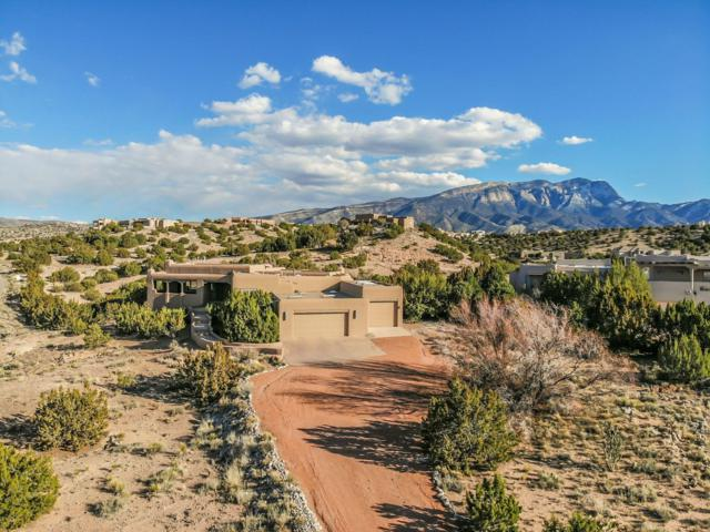 2 First Mesa Court, Placitas, NM 87043 (MLS #939962) :: Campbell & Campbell Real Estate Services