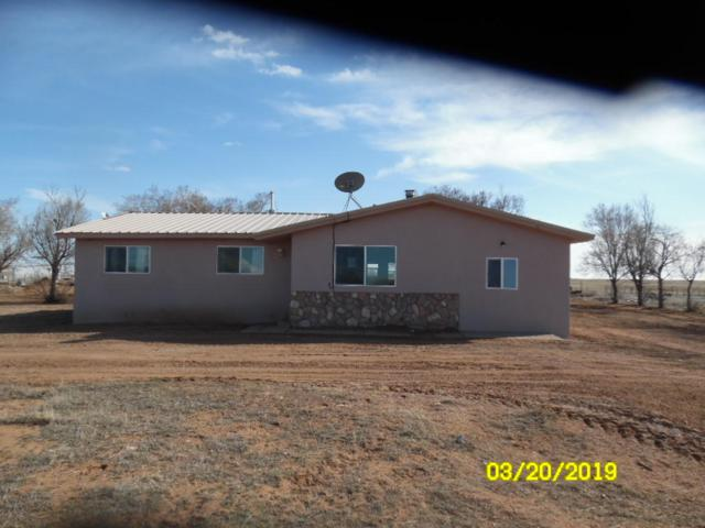 31 Borachita, Moriarty, NM 87035 (MLS #939998) :: Campbell & Campbell Real Estate Services
