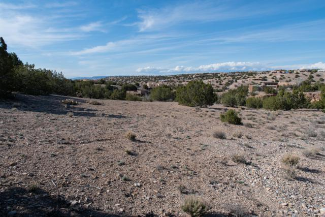 0 Mimbres Road, Placitas, NM 87043 (MLS #940016) :: Campbell & Campbell Real Estate Services