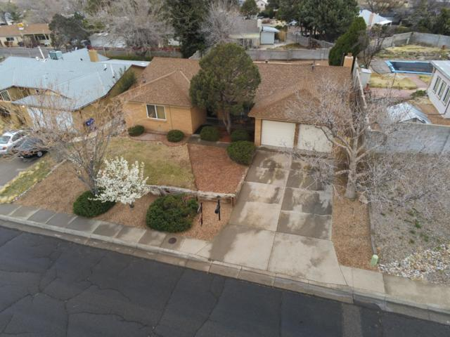 4623 Jamaica Drive NE, Albuquerque, NM 87111 (MLS #940051) :: The Bigelow Team / Realty One of New Mexico