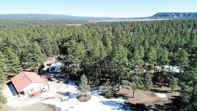9 Aspen Loop, Ramah, NM 87321 (MLS #940077) :: Campbell & Campbell Real Estate Services