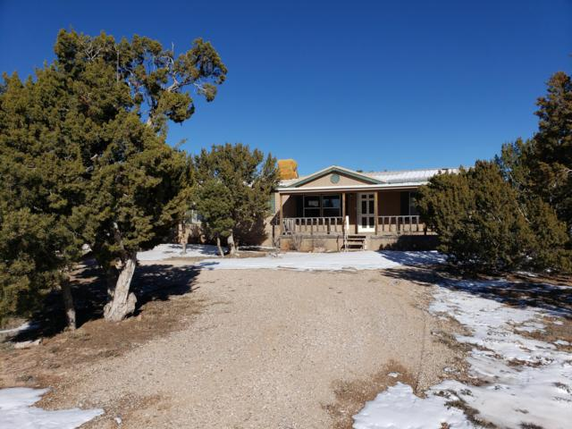 700 Monte Alto Avenue, Mountainair, NM 87036 (MLS #940078) :: Campbell & Campbell Real Estate Services