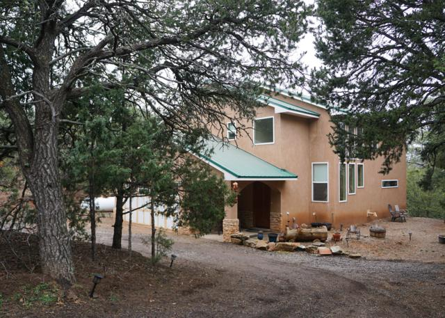 74 Easy Street, Tijeras, NM 87059 (MLS #940157) :: Silesha & Company