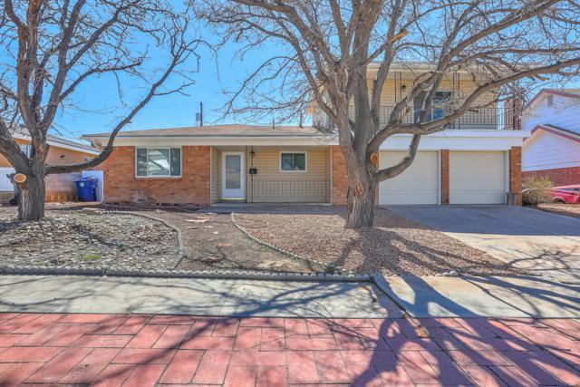 8508 James Avenue NE, Albuquerque, NM 87111 (MLS #940160) :: Silesha & Company