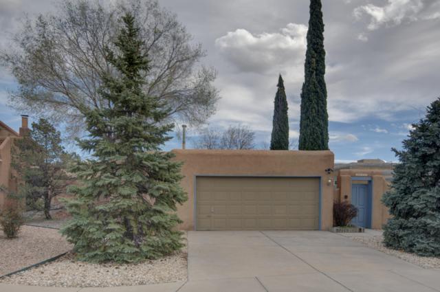 10444 Casador Del Oso NE, Albuquerque, NM 87111 (MLS #940221) :: Silesha & Company