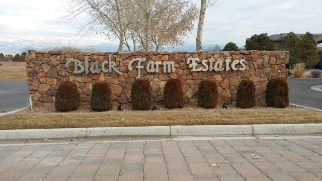 9515 Riverdale NW, Albuquerque, NM 87114 (MLS #940271) :: Silesha & Company