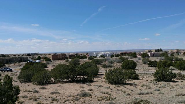 2 Alexi Place, Placitas, NM 87043 (MLS #940290) :: The Bigelow Team / Realty One of New Mexico
