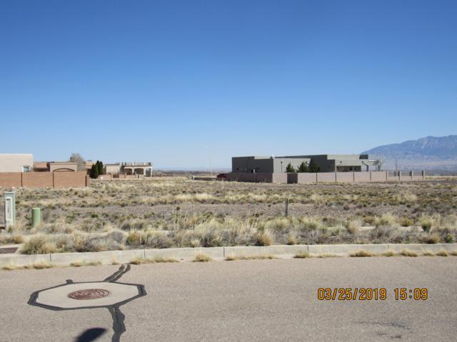 6508 Pato (L7,B7,U18,Vc) Road, Albuquerque, NM 87120 (MLS #940314) :: Silesha & Company