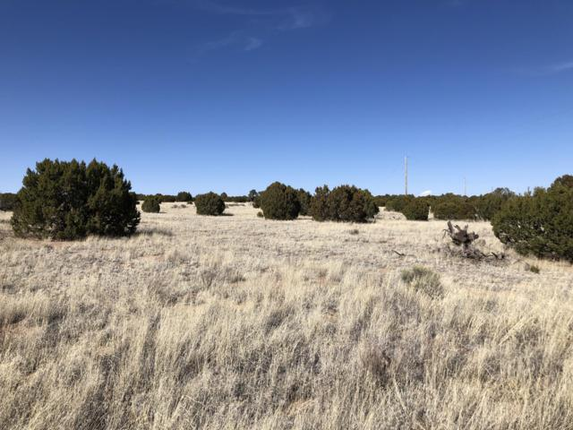 Lot 67 Pinon Springs Ranch, Magdalena, NM 87825 (MLS #940334) :: Campbell & Campbell Real Estate Services