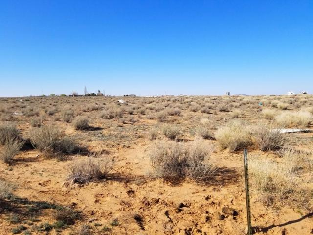 87 Jensen Court, Belen, NM 87002 (MLS #940409) :: The Bigelow Team / Realty One of New Mexico