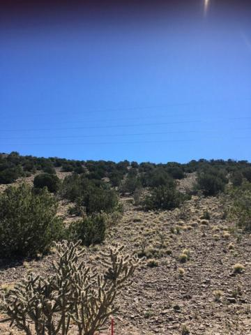 14 Las Brisas, Placitas, NM 87043 (MLS #940442) :: Campbell & Campbell Real Estate Services