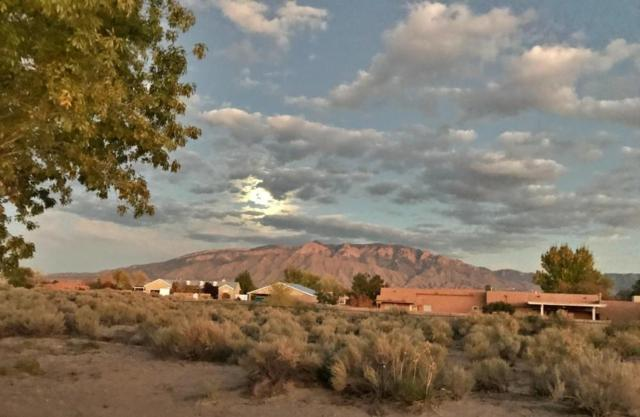 941 Camino De La Tierra, Corrales, NM 87048 (MLS #940532) :: Campbell & Campbell Real Estate Services