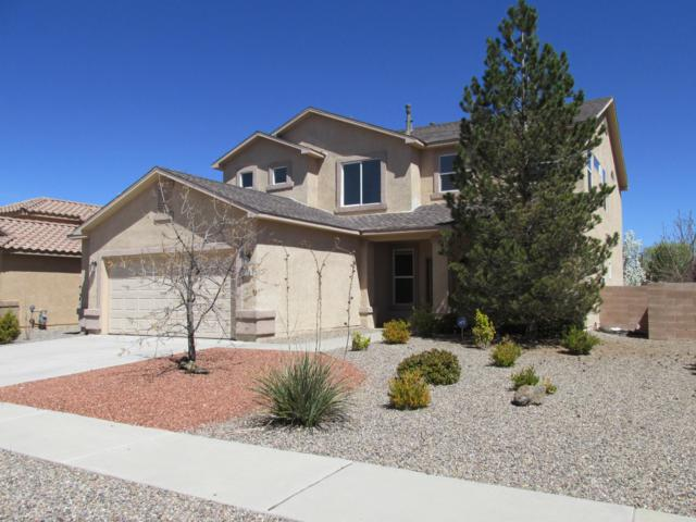 10106 Calle Placido NW, Albuquerque, NM 87114 (MLS #940604) :: The Bigelow Team / Realty One of New Mexico