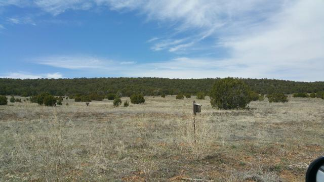 Sun Glow Ct, Edgewood, NM 87015 (MLS #940699) :: Campbell & Campbell Real Estate Services