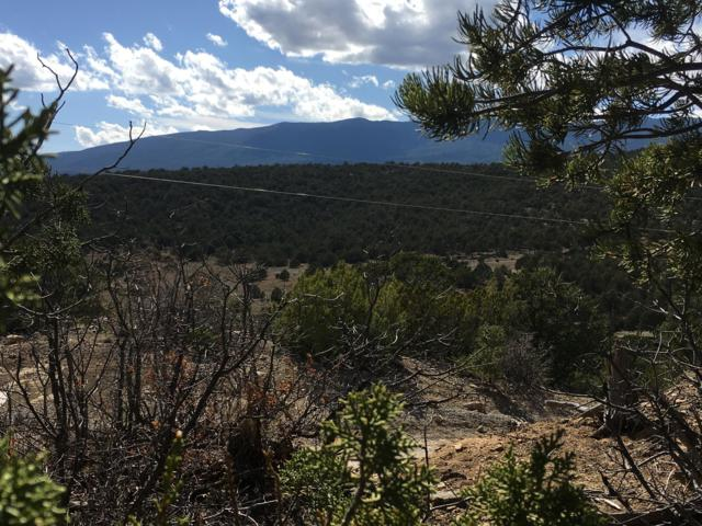 Lost Valley Loop, Cedar Crest, NM 87008 (MLS #940731) :: Campbell & Campbell Real Estate Services