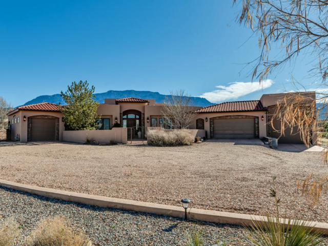10100 Anaheim Avenue NE, Albuquerque, NM 87122 (MLS #940791) :: Campbell & Campbell Real Estate Services