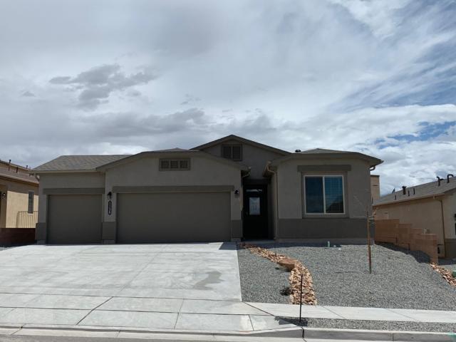 1138 Grace Street NE, Rio Rancho, NM 87144 (MLS #941070) :: Silesha & Company