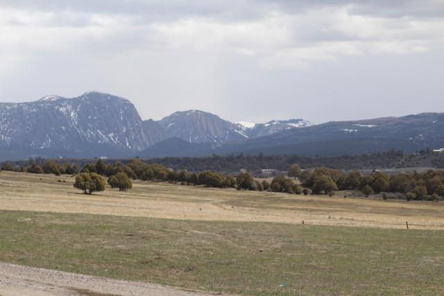 595 Nm Hwy 95, Rutheron, Los Ojos, NM 87575 (MLS #941130) :: The Bigelow Team / Realty One of New Mexico
