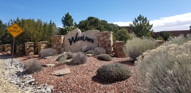43 Woodlands Drive, Tijeras, NM 87059 (MLS #941250) :: The Bigelow Team / Realty One of New Mexico