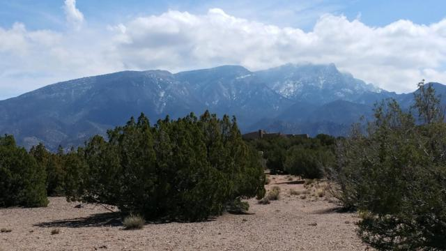 Meadows Ct Lot 114, Placitas, NM 87043 (MLS #941340) :: The Bigelow Team / Realty One of New Mexico
