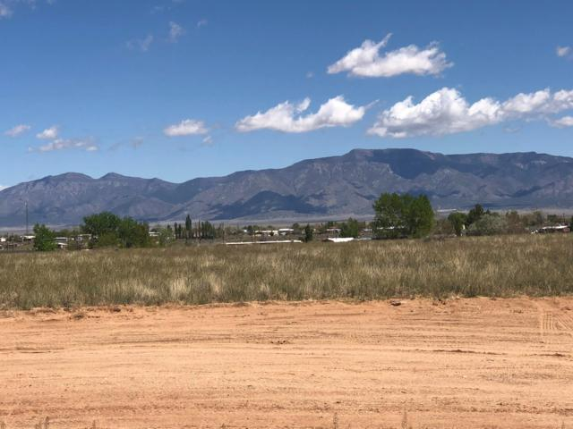 Ryan Court, Los Lunas, NM 87031 (MLS #941342) :: The Bigelow Team / Realty One of New Mexico