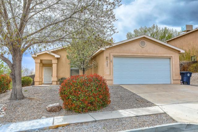 8205 Rancho Seguro NW, Albuquerque, NM 87120 (MLS #941473) :: Campbell & Campbell Real Estate Services