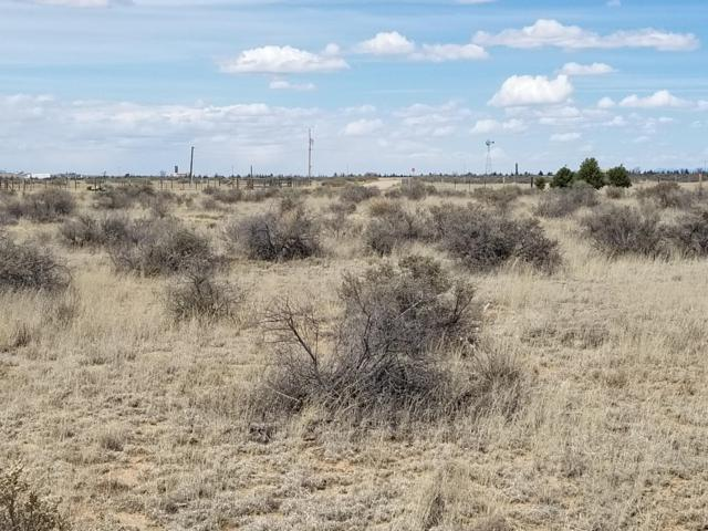 Roper Lane, Moriarty, NM 87035 (MLS #941484) :: The Bigelow Team / Red Fox Realty