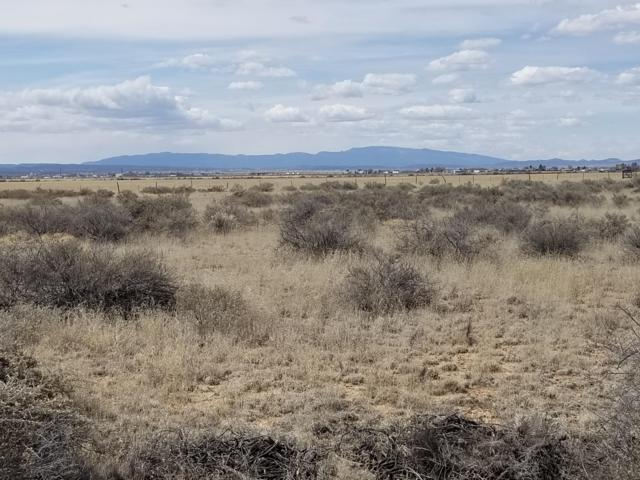 Lariat Loop, Moriarty, NM 87035 (MLS #941489) :: The Bigelow Team / Red Fox Realty