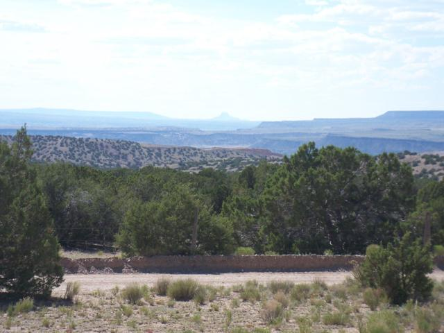 2 Palomar Rd, Placitas, NM 87043 (MLS #941584) :: Campbell & Campbell Real Estate Services