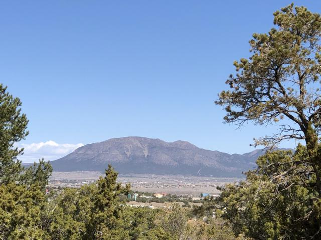22 Moriarty Road, Edgewood, NM 87015 (MLS #941603) :: Campbell & Campbell Real Estate Services