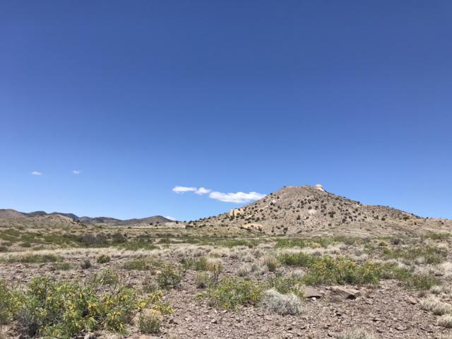 Caje Trail Road, Hillsboro, NM 88042 (MLS #941611) :: Silesha & Company